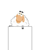 PR. Business Sheep that hold Card Stock Image