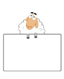 PR. Innocent Sheep that hold Card Royalty Free Stock Photos