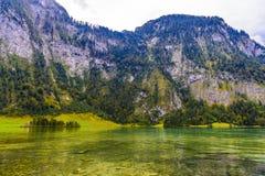 Pr? d'herbe pr?s de Koenigssee, Konigsee, parc national de Berchtesgaden, Bavi?re, Allemagne photographie stock