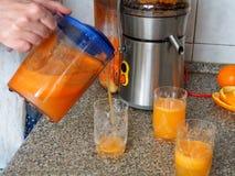 Pr?paration du jus des fruits frais et des l?gumes images stock