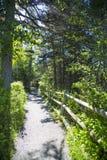 Prętowy schronienie w Acadia parku narodowym Zdjęcia Stock