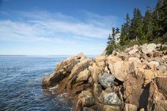 Prętowy schronienie w Acadia parku narodowym Zdjęcia Royalty Free