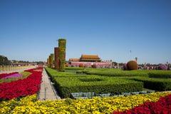 Praça de Tiananmen China, Ásia, Pequim, dia nacional, cama de flor, fotografia de stock royalty free