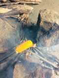 Prażak kukurudza zdjęcia stock