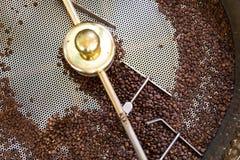 Prażak Surowe Organicznie Kawowe fasole W małej skali produkcji zdjęcia royalty free