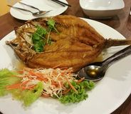 Pra托德Nam Pla,油煎的大鱼吃用由鱼子酱做的宇宙调味汁,泰国食物,泰国 库存图片