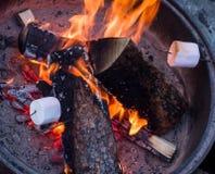 Prażaków marshmallows Obraz Royalty Free