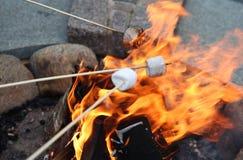 Prażaków Marshmallows Obraz Stock