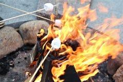 Prażaków Marshmallows Zdjęcia Stock