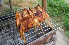 Prażaka kurczak Zdjęcia Royalty Free