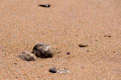 Praa铺沙海滩,康沃尔郡,英国 免版税图库摄影