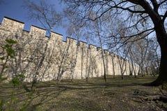 Praag - de muur van de Honger stock foto's