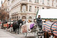 Praag, 13 December, 2016: Kerstmis in Praag De paarden met karren en de koetsier wachten op toeristen in de leiding Stock Afbeeldingen