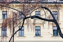 Praag, Tsjechische Republiek - 04 02 2013: Architectuur, gebouwen en oriëntatiepunt Weergeven van de straten van Praha royalty-vrije stock afbeeldingen