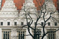 Praag, Tsjechische Republiek - 04 02 2013: Architectuur, gebouwen en oriëntatiepunt Weergeven van de straten van Praha stock fotografie