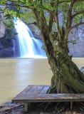Praatje trakan waterval Stock Fotografie