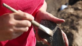 Praca archeologa początkowy znalezienie znalezisko przy miejscem ekskawacja zdjęcie wideo