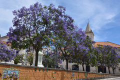 Praca da Republica square in Aveiro Portugal. Stock Photo