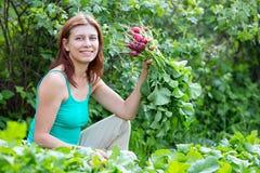 praca ogrodowa kobieta zbiera rzodkwi żniwo Obrazy Royalty Free