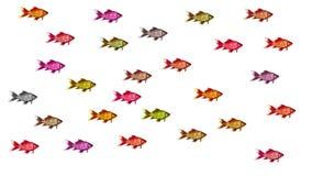 Praca zespołowa, pojęcie różnorodność - ogólnospołeczna równość zdjęcie royalty free