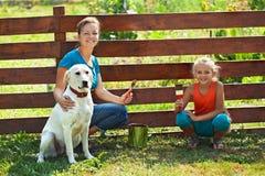 Praca zespołowa - kobieta maluje ogrodzenie z małą dziewczynką i psem Zdjęcia Royalty Free