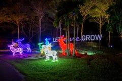 Prachinburi, Thailand-January11,2018 : La LED s'allument dans le jardin français à la galerie de Dasada Photos stock