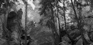 Prachov岩石地区 皇族释放例证