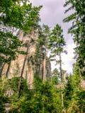 Prachovrotsen in de Tsjechische Republiek Onbeschermd park royalty-vrije stock fotografie