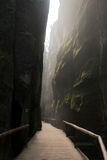 Prachovske Rocks. Scenic view of pathway receding through narrow gorge or canyon in Prachovske Rocks, Czech Republic Royalty Free Stock Images