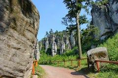 Prachovske skaly, Tsjechisch paradijs, Bohemen royalty-vrije stock afbeelding