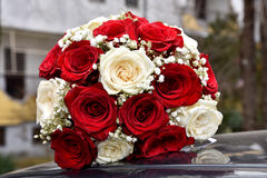 Pracht der roten Rosen seiner Schönheit und Frische Stockfoto