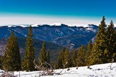 Prachtig de winterlandschap met blauwe hemel Royalty-vrije Stock Afbeeldingen