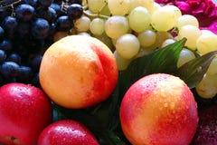 Prachtig fruitig stilleven stock fotografie