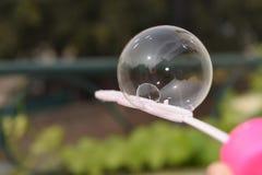 Prachtig gevangen zeepballon stock foto's