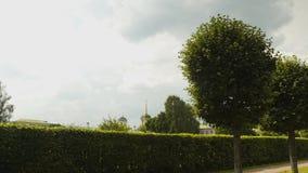 Prachtig groen labyrint Gebied van het landschaps het mooie park stock video