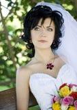 Prachtig huwelijk Stock Afbeelding