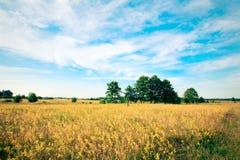 Prachtig landschap Royalty-vrije Stock Afbeeldingen