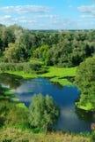 Prachtig landschap met groene bomen en de rivier Stock Afbeeldingen