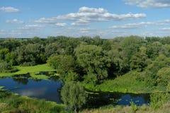 Prachtig landschap met groene bomen en de rivier Stock Fotografie