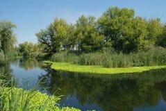 Prachtig landschap met groene bomen en de rivier Royalty-vrije Stock Afbeelding