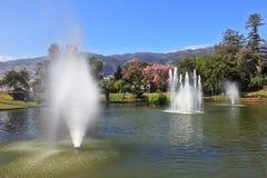 Prachtig park bij de toevlucht Royalty-vrije Stock Afbeelding