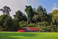 Prachtig park met bloembedden royalty-vrije stock fotografie