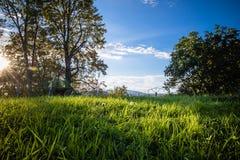 prachtig toneel groen landschap met weide en bomen in blauwe hemel, verandering van seizoenen, laatste schaduwen van de zomer in  Stock Afbeeldingen
