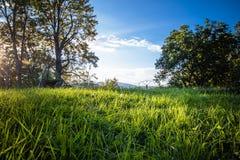prachtig toneel groen landschap met weide en bomen in blauwe hemel, verandering van seizoenen, laatste schaduwen van de zomer in  Royalty-vrije Stock Afbeelding