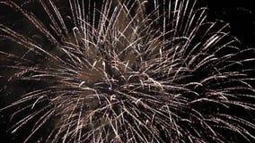 Prachtig vakantievuurwerk in vieringsconcept stock videobeelden