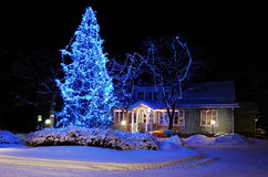 Prachtig verfraaide Kerstboom Stock Afbeeldingen