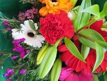 Prachtige bloemen met een zo goede kleur en een geur stock foto