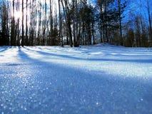 Prachtige de winterlandschappen op een zonnige dag royalty-vrije stock fotografie