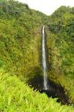 Prachtige die Watervallen door Indrukwekkende Vegetatie worden omringd Royalty-vrije Stock Fotografie