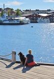 Prachtige juni-dag in Luleå Royalty-vrije Stock Afbeeldingen